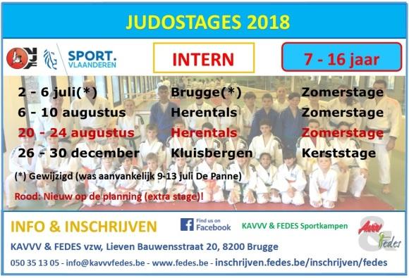Flyer judo 2018 liggend
