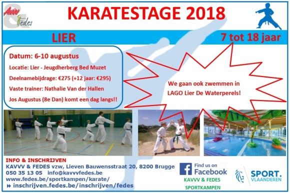 Flyer Karate 2018