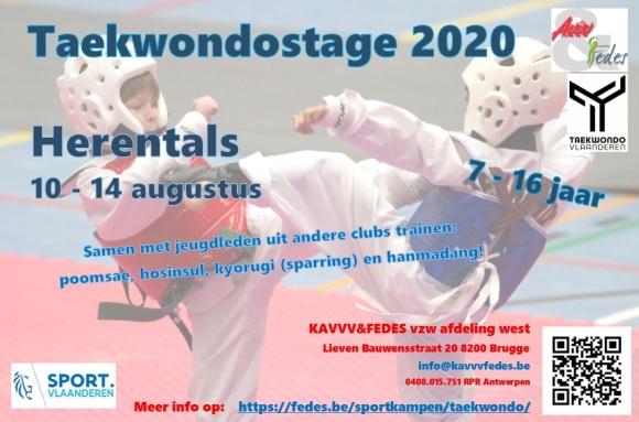 Taekwondo Flyer