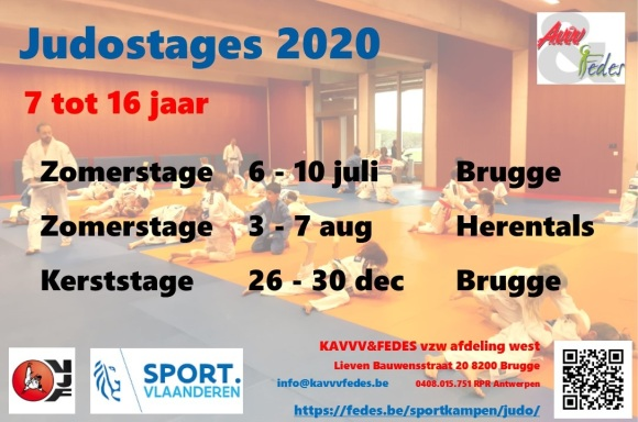 Flyer judostages 2020